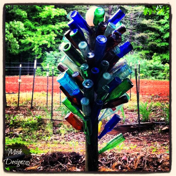 bottletreesp