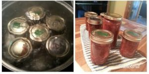 Jodie's Strawberry Rhubarb Jam